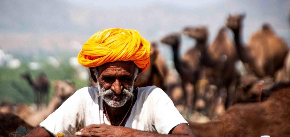 phototrip - Rajasthan mản đất của sa mạc pháo đài