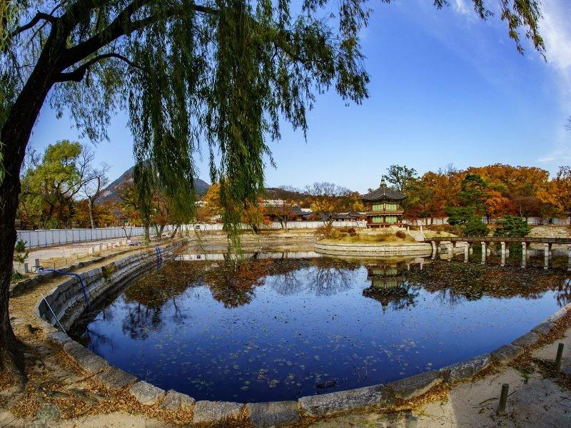phototrip- sắc thu Hàn Quốc